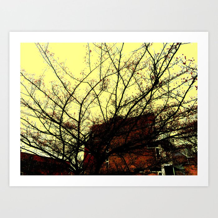 Through Some Branches  Art Print