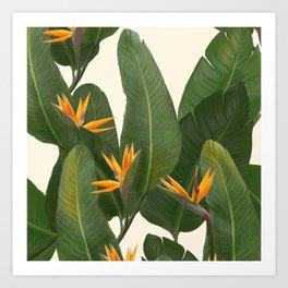 tropical floral Art Print