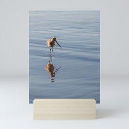 Sandpiper on Shore Photography, Sea Bird Photography, Coastal California Art, Stinson Beach Home Decor Mini Art Print