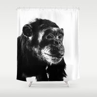 darwin Shower Curtains featuring Chimpanzee by Claire Doherty