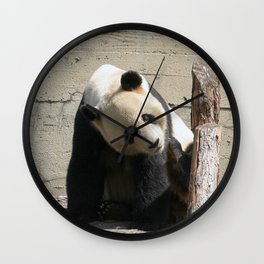 Panda_20170507_by_JAMFoto Wall Clock