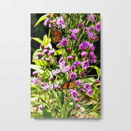 Monarch Butterfly Couple Metal Print