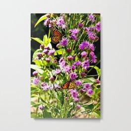 Monarch Butterfly Couple Metal Print
