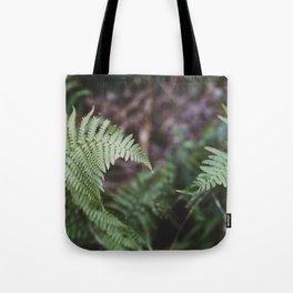 Ferns intertwine Tote Bag