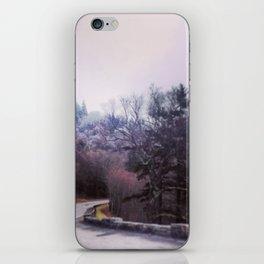 Winter On Top iPhone Skin