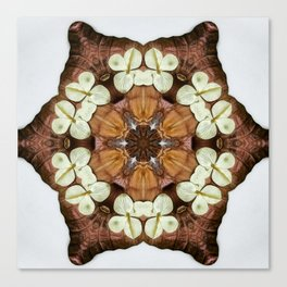 Moth and Flower Mandala Canvas Print