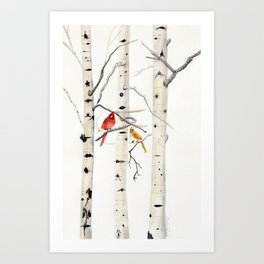 Birch Trees and Cardinal Art Print