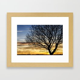 Tree Sunrise 2 Framed Art Print