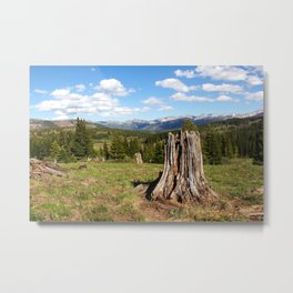 Colorado Landscape of Old Verses New Life Metal Print