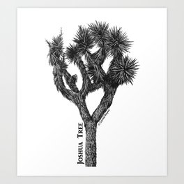 Joshua Tree Burns Canyon by CREYES Art Print