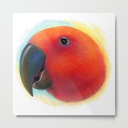 Red female eclectus parrot realistic painting Metal Print