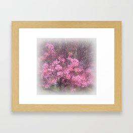 cherry's blossom - 3 Framed Art Print
