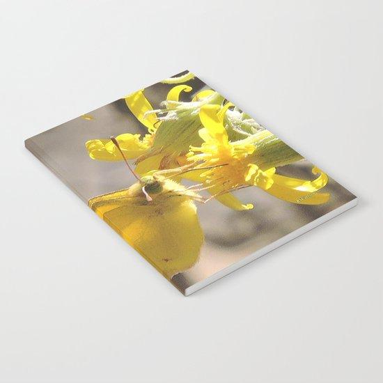 Sulphur Butterfly Imbibing Notebook