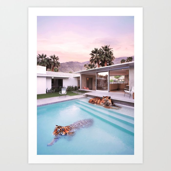 Palm Springs Tigers Art Print