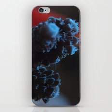 Acropora Coral iPhone & iPod Skin
