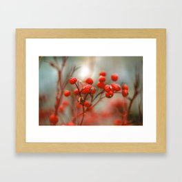 New York Nature II Framed Art Print