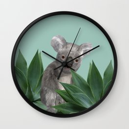 Koala Bear between Agave leaves Wall Clock