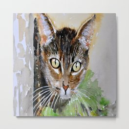 The Curious Tabby Cat Metal Print