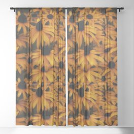 Black-Eyed Susan, yellow autumn daisy Sheer Curtain