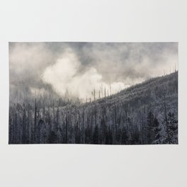 Steamy Forest -  Yellowstone National Park Rug