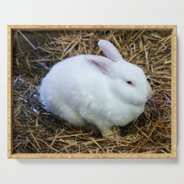 White Bunny Serving Tray