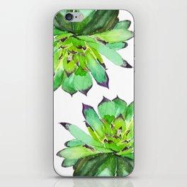 green succulent 2 iPhone Skin