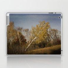 Leaning Uphill Laptop & iPad Skin