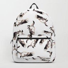 Steppen ferret (Mustela eversmanii) Backpack