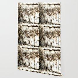 Lead Paint Forever Wallpaper