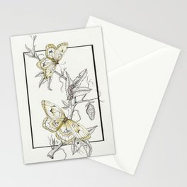 Life-Cycle Study: Butterfly Stationery Cards
