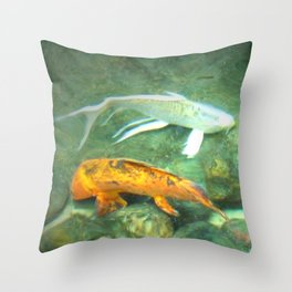 Coy Fish Throw Pillow