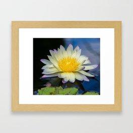 Watelily Magic Framed Art Print