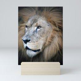 African Lion Mini Art Print