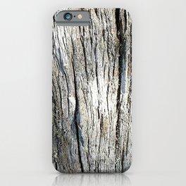 Old Stump iPhone Case