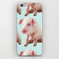 pigs iPhone & iPod Skins featuring Pigs by Dora Birgis