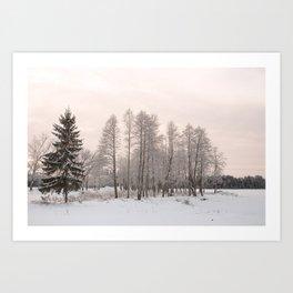 russian snowy trees Art Print