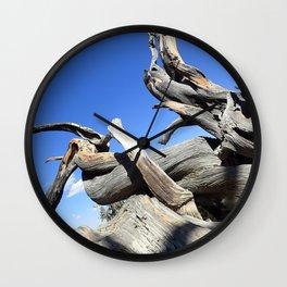 Trees and sky Wall Clock