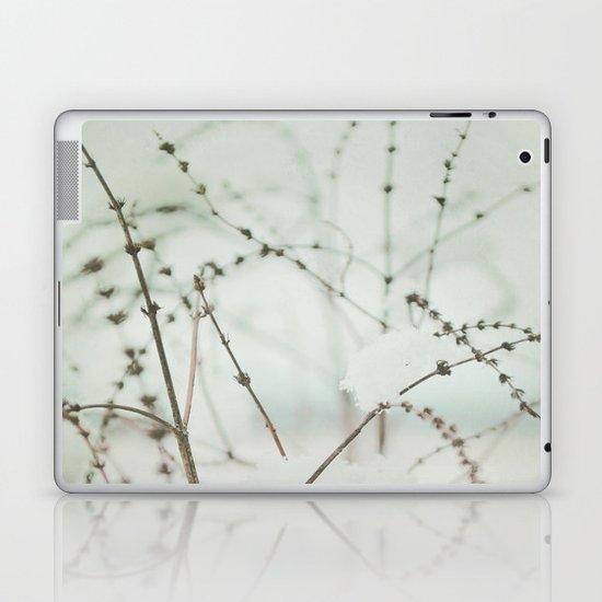 Winter's Magic Laptop & iPad Skin