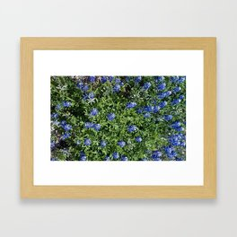 Stepping Out In Blue Framed Art Print