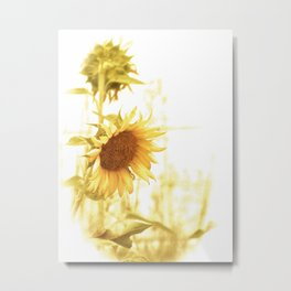 Vintage Sunflower in the Light Metal Print