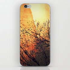 The storm iPhone & iPod Skin