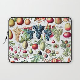 Adolphe Millot - Fruits pour tous - French vintage poster Laptop Sleeve