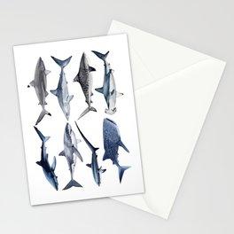 8 SHARKS Stationery Cards