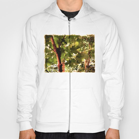 Maple Hoody