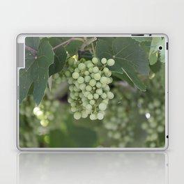 grape grows on vineyard in spring Laptop & iPad Skin