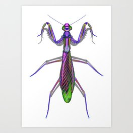 Purple Neon praying Manti Art Print