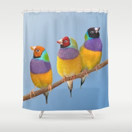 Gouldian Finches - Pastel Shower Curtain