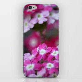 Pink White Verbena Flowers iPhone Skin