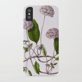 Abronia Umbellata iPhone Case