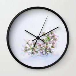 Cilantro flower - Botanical Photography Wall Clock